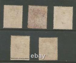 Sg 29 5x 1855 Qv 1d Red-brown Wat Large Crown P. 14 Mint Ou Cat Non Utilisé £1200